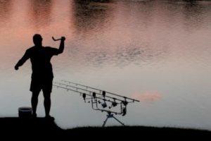 Pêche de nuit de la carpe en vendée